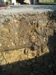 2. Suelo Típico de Piedra Caliza